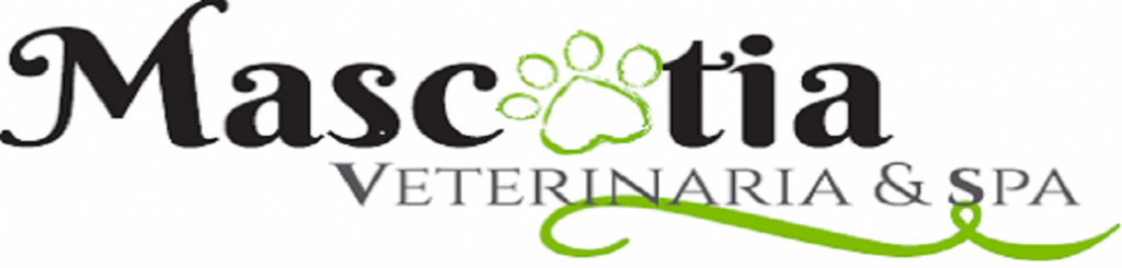 logo_examen (4)